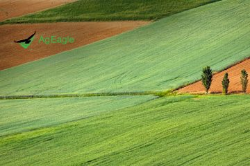 AgEagle's Drone Imagery to Help Reduce Chemicals in Food