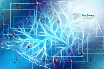 Brain Research Foundation Statement About Paul Allen, Founder The Allen Institute for Brain Research