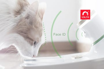 Italian Firm Volta Wins Innovation Award With Mookkie, AI-Driven Pet Feeder That Recognizes Your Cat or Dog