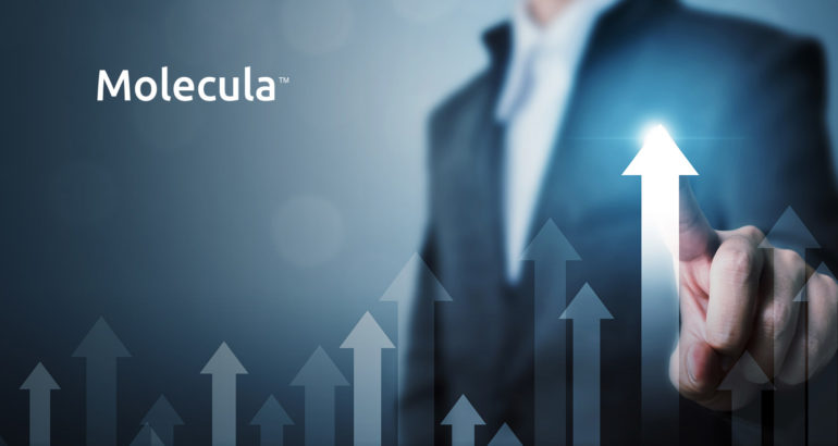 Molecula Hires Chief Strategy and Marketing Officer to Accelerate Momentum and Growth